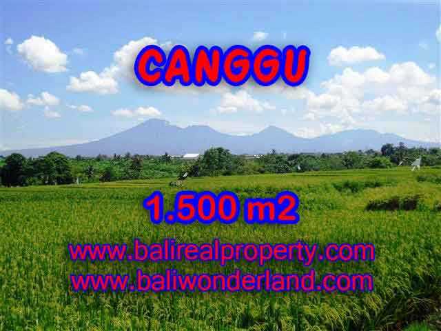 Amazing Land in Bali for sale in Canggu Pererenan Bali – TJCG144