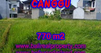 Wonderful Property in Bali for sale, land in Canggu Bali for sale – TJCG148