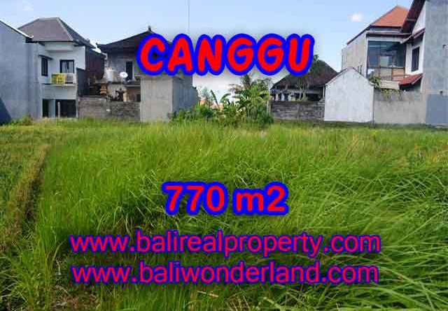 Wonderful Property in Bali for sale, land in Canggu Bali for sale – TJCG148