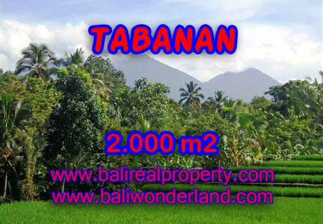 Land for sale in Tabanan Bali, Wonderful view in Tabanan Penebel – TJTB121