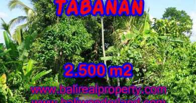 Land for sale in Tabanan, Magnificent view in Tabanan Penebel Bali – TJTB122