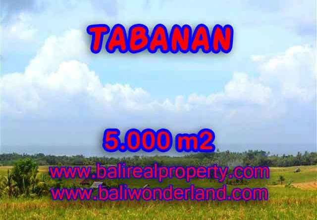 Land in Tabanan for sale, Outstanding view in Tabanan Selemadeg Bali – TJTB124