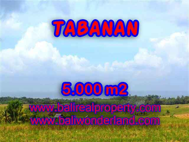 Land in Tabanan for sale, Outstanding view in Tabanan Selemadeg Bali – TJTB124