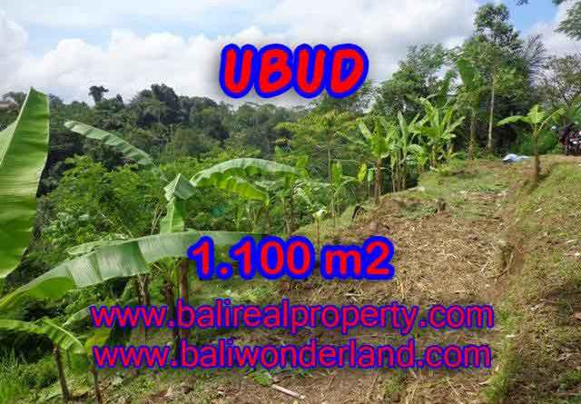 Beautiful Land for sale in Bali, Ricefield view by valley in Ubud Bali – TJUB407