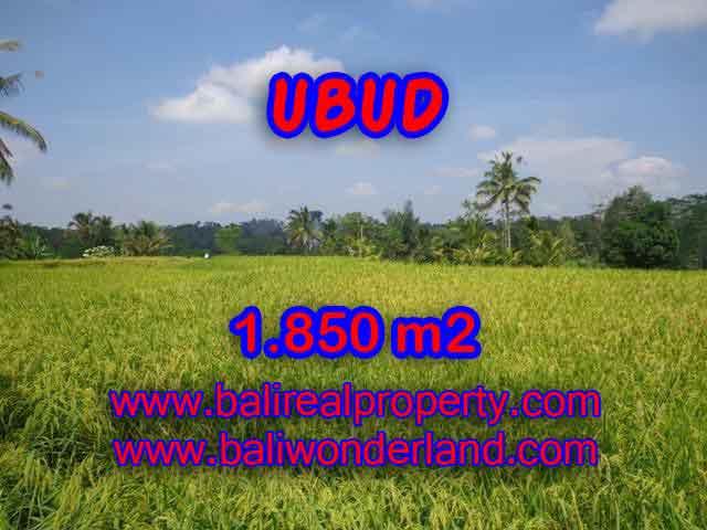 Wonderful Property in Bali for sale, land in Ubud Bali for sale – TJUB410