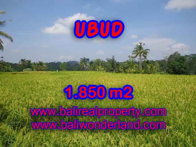 Wonderful Property in Bali for sale, land in Ubud Bali for sale – TJUB410