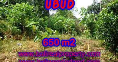 Property sale in Bali, Beautiful land in Ubud for sale – TJUB417