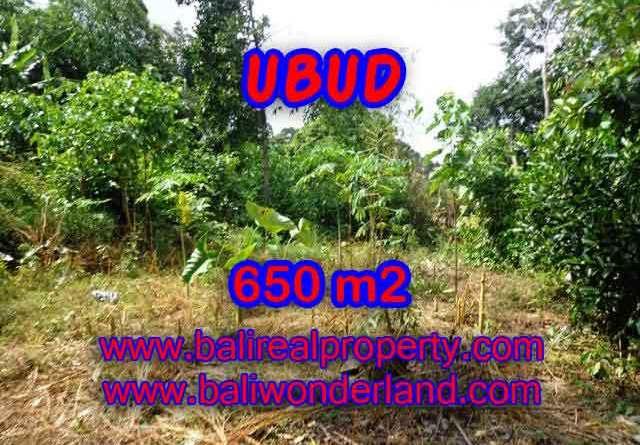 Property sale in Bali, Beautiful land in Ubud for sale – TJUB417
