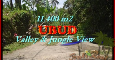 Land in Ubud for sale, Attractive view in Ubud Payangan Bali – TJUB431