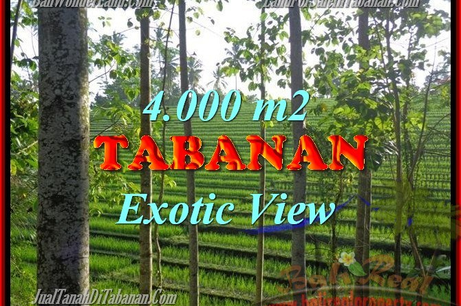 Beautiful Property for sale in Bali, LAND FOR SALE IN TABANAN Bali – TJTB150