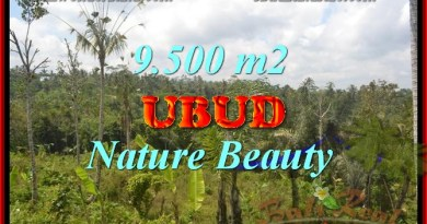 Land in Ubud Bali for sale, Exotic view in Ubud Payangan – TJUB430