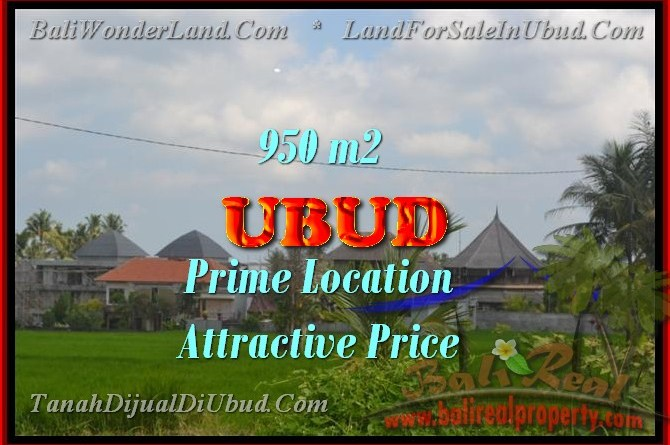 Land for sale in Ubud Bali, Unbelievable view in Ubud Center – TJUB428