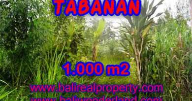 Exceptional Property in Bali, land for sale in Tabanan Bali – TJTB104