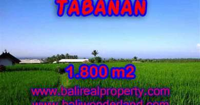 Land in Tabanan for sale, Stunning view in Tabanan Penebel Bali – TJTB119