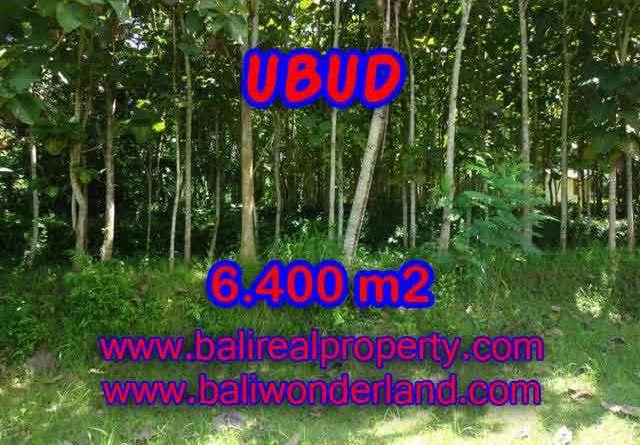 Land in Bali for sale, Outstanding view in Ubud Payangan Bali – TJUB401