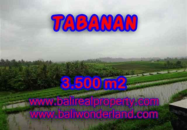 Land for sale in Bali, magnificent view Tabanan Bali – TJTB141