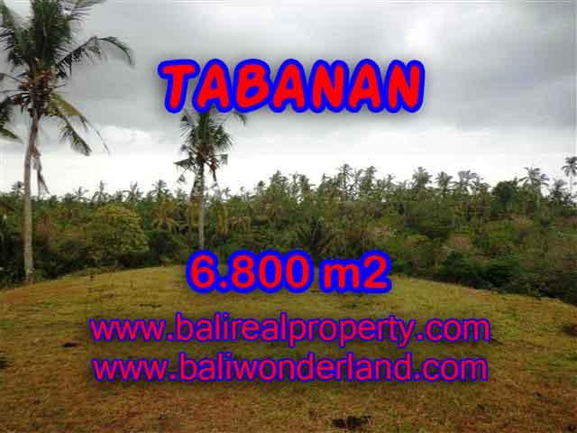 Stunning Land for sale in Bali, Rice fields view in Tabanan Bali - TJTB140