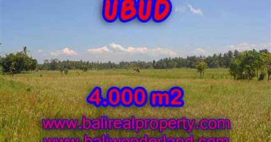 Extraordinary Land for sale in Ubud Bali, Mountain and rice paddy view in Ubud Center– TJUB387