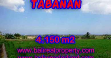 Land for sale in Bali, spectacular view in Tabanan Bali – TJTB137