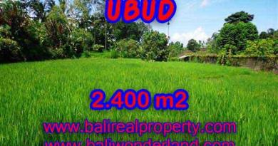 Land in Bali for sale, astounding view in Ubud Bali – TJUB390