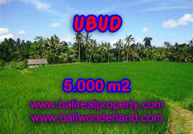 Land for sale in Bali, astonishing view in Ubud Tegalalang Bali – TJUB389