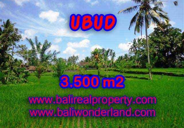 Land for sale in Bali, amazing view in Ubud Tegalalang – TJUB388