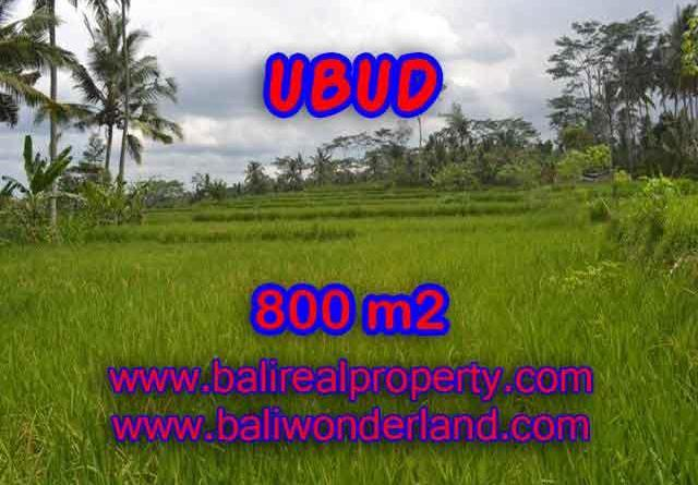 Land for sale in Bali, exceptional view in Ubud Pejeng – TJUB393