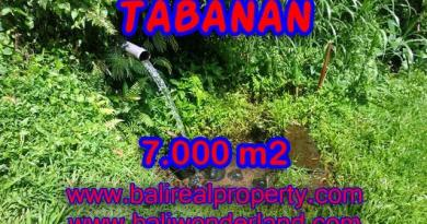 Outstanding Property in Bali for sale, land in Tabanan for sale – TJTB089