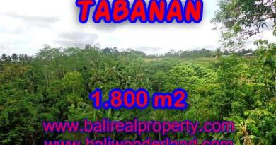 Wonderful Property in Bali for sale, land in Tabanan Bali for sale – TJTB088