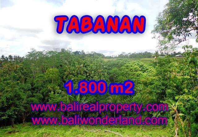 Wonderful Property in Bali for sale, land in Tabanan Bali for sale – TJTB088
