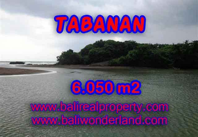 Property in Bali for sale, Fantastic view in Tabanan Selemadeg – TJTB098