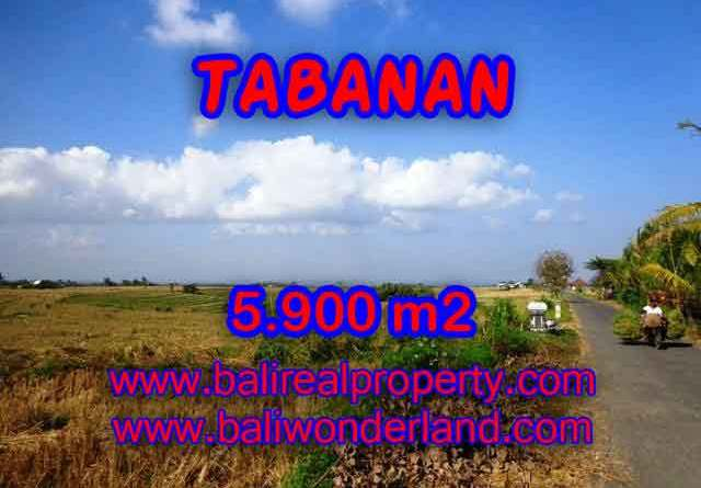 Land for sale in Bali, exceptional view in Tabanan selemadeg – TJTB131