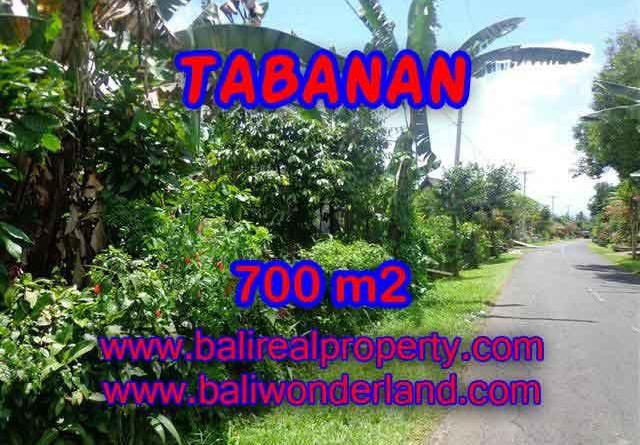 Beautiful Property for sale in Bali, LAND FOR SALE IN TABANAN Bali – TJTB090