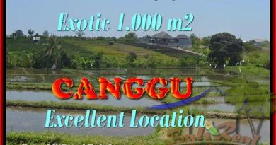 FOR SALE Magnificent 1.000 m2 LAND IN Canggu Kayutulang BALI TJCG168