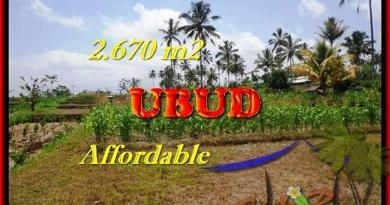 Beautiful PROPERTY LAND IN Ubud Tegalalang BALI FOR SALE TJUB451