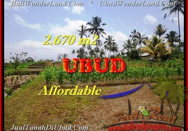 Beautiful PROPERTY LAND IN Ubud Tegalalang BALI FOR SALE TJUB451