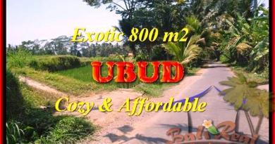 FOR SALE Magnificent PROPERTY 800 m2 LAND IN Ubud Pejeng Tampaksiring BALI TJUB457