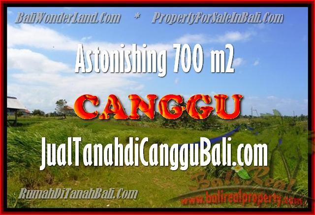 Affordable 700 m2 LAND SALE IN Canggu Kayu tulang BALI TJCG155