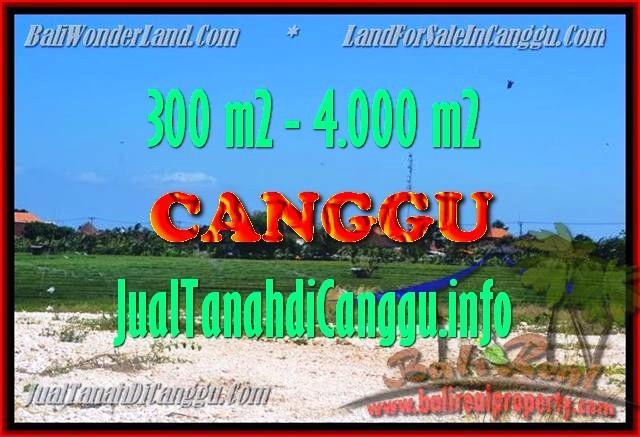 Exotic LAND IN Canggu Batu bolong FOR SALE TJCG151