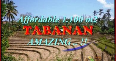 Exotic 1.100 m2 LAND FOR SALE IN TABANAN BALI TJTB170