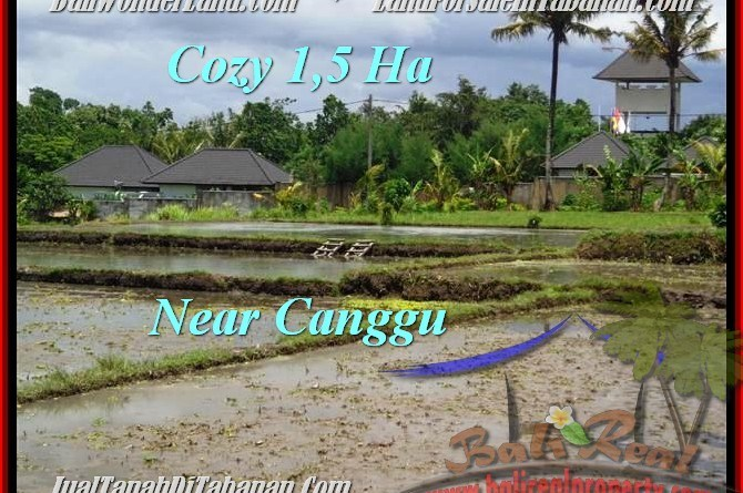 Exotic PROPERTY LAND FOR SALE IN TABANAN TJTB196