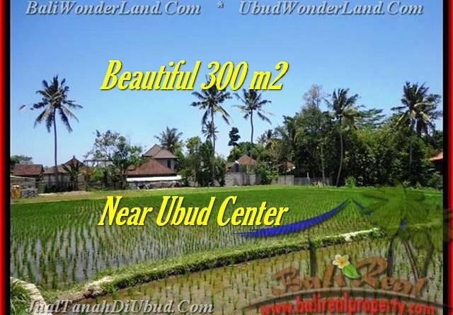 FOR SALE Exotic PROPERTY LAND IN Sentral Ubud BALI TJUB436