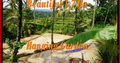 Exotic LAND FOR SALE IN Ubud Payangan BALI TJUB470
