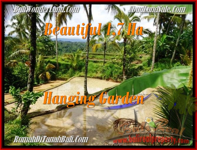 Beautiful PROPERTY 17,000 m2 LAND SALE IN UBUD BALI TJUB470