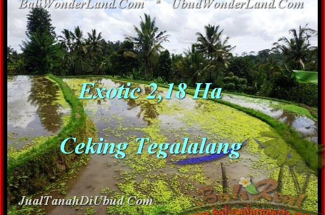FOR SALE Beautiful 21,800 m2 LAND IN UBUD TJUB471