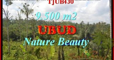 FOR SALE Beautiful PROPERTY 9,500 m2 LAND IN UBUD BALI TJUB430