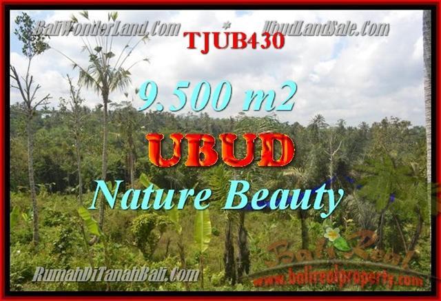 FOR SALE Beautiful PROPERTY 9,500 m2 LAND IN UBUD BALI TJUB430