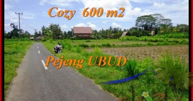 Exotic LAND FOR SALE IN Ubud Pejeng BALI TJUB465