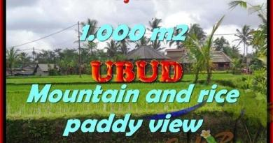 Affordable PROPERTY UBUD BALI 1,000 m2 LAND FOR SALE TJUB424