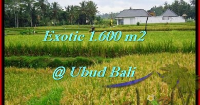 Magnificent 1,600 m2 LAND IN UBUD BALI FOR SALE TJUB487